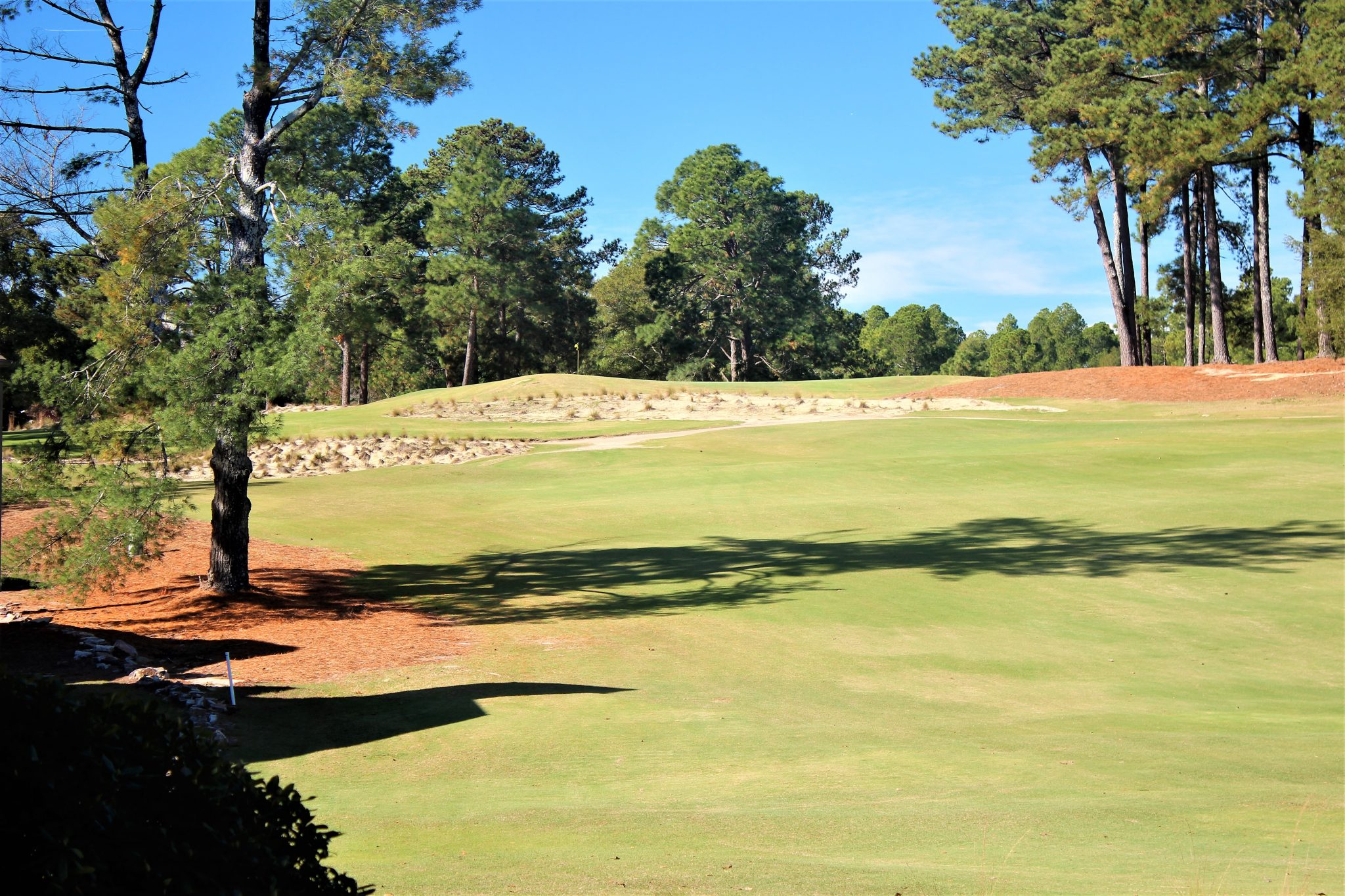 Pine Valley 52 - Legacy Golf Packages